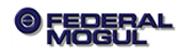 Federal-Mogul manufactures automotive components